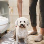 Wasze sposoby na łazienkę